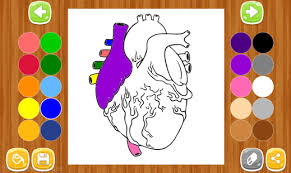 anatomy coloring book android apps google play