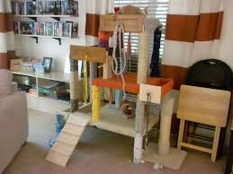 Cat Trees For Big Cats Cat Tree House For Big Cats Best Cat Tree House Idea For Small