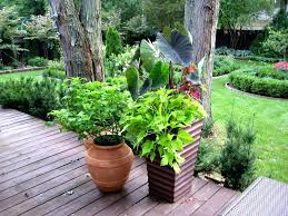 Herb Garden Pot Ideas Pot Ideas For Garden Container Herb Garden Ideas Pinterest