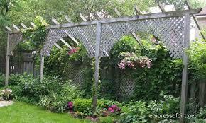 Privacy Garden Ideas Garden Fence Screen Privacy Ideas Empress Of Dirt