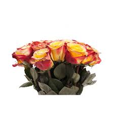yellow and red bi color rose bouquet roses types of flowers