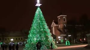 green christmas tree in kaunas lithuania with snow 2012 01 14