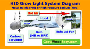 best hps grow lights hid grow light exhaust setup diagram see how to set up your