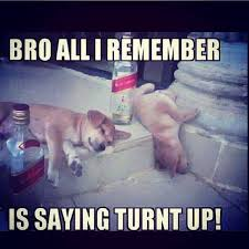 Turnt Meme - 32 best turnt up images on pinterest partying hard funny photos
