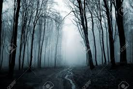 road trough a dark creepy forest with fog on halloween stock photo