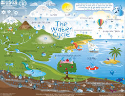 Show Me A Picture Of The World Map by The Water Cycle For Schools And Students