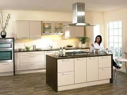 cabinet doors kitchen kitchen door replacement companies adding glass to kitchen cabinet