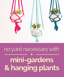 no yard necessary with mini gardens u0026 hanging plants thegoodstuff