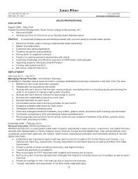 Example Resume Sales Sample Resume For Jewelry Sales Manager Augustais