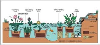 Garden Setup Ideas Cutrine Water Garden And Pond Setup Diagram Garden Gardening