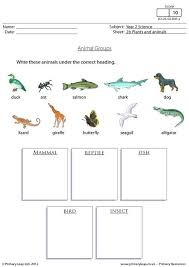 primaryleap co uk animals and their young worksheet