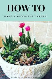 how to make a succulent garden succulents garden gardens and