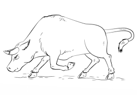 printable bulls schedule cartoon bull coloring page free printable coloring pages