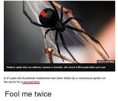 Funny Spider Meme - 25 best memes about australian funny and spider australian