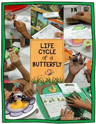butterfly life cycle resources u0026 free printables butterfly life