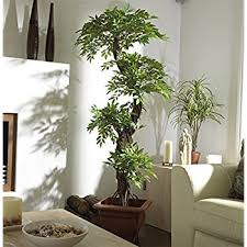 large contemporary artificial plants and trees luxury
