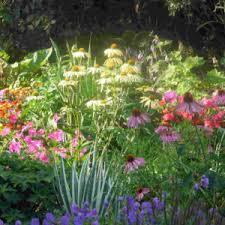 butterfly garden ideas