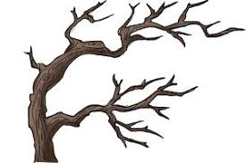 how to draw tree branches drawingnow