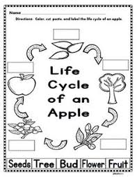 apple life cycle mobile cycling apples and johnny appleseed