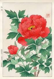 Japanese Flowers Pictures - hydrangea from shodo kawarazaki spring flower japanese woodblock