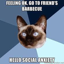 Anxiety Cat Memes - saturday 28 february 2015 meme images chronic illness cat