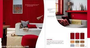 daine auman u0027s blog dulux paint centers