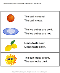adjectives in sentences tick the sentence with correct adjective worksheet turtle diary