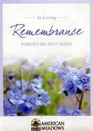 forget me not seed packets cremation memorial forget me not remembrance seeds