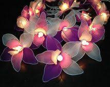 LED Battery Operated White Rose Flower Fairy Lights By - Pink fairy lights for bedroom