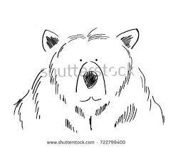 funny bear sketch vector cartoon comic stock vector 717798658