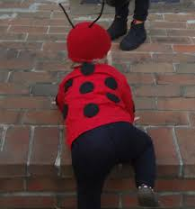 ladybug halloween costume diy halloween costumes cute little ladybug super mom hacks