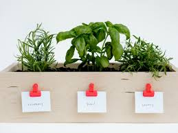how to make a kitchen planter box for herbs diy