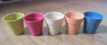 biodegradable plant pots 100 degradable in 6 month