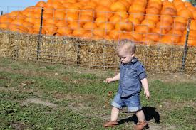 Pumpkin Patch St Louis Mo by Family Archives Raising Roberts