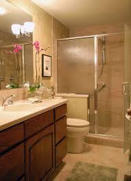 small bathroom walk in shower designs bathroom small bathroom design ideas lovely amazing small
