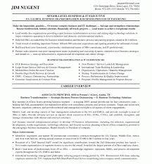 senior executive resume sle senior executive resume marvelous financial service marketing