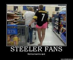 Funny Steelers Memes - making fun of steelers fans thephins com