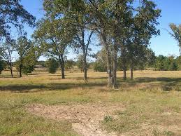 huntsville tx area country homes acreage for sale white ivy
