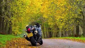suzuki motorcycle hayabusa suzuki gsx1300r hayabusa motorcycle review road test gt