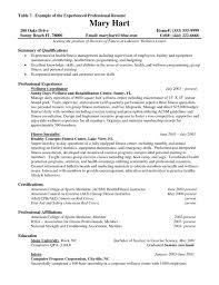 professional objectives download it resume samples haadyaooverbayresort com best templates