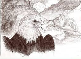 11 best birds and animals paintings and drawings images on