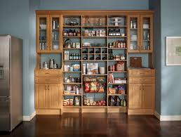 Storage Cabinets Kitchen Pantry Great Pantry Shelves Plus I The Kitchen Color Pantries