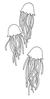fresh jellyfish coloring pages cool coloring i 7746 unknown