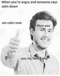 dopl3r com memes when youre angry and someone says calm down am