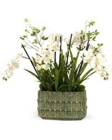 don u0027t miss these deals on orchid planters