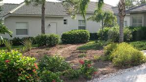 south county assembly of neighborhoods scan florida friendly