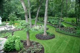pretty trees for landscaping best landscape around trees ideas on