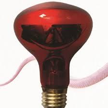 products reptile bulb uva u0026 heating bulb ppz export u0026 import co
