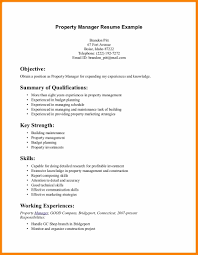 Resume Background Summary Examples by Resume Skills Summary Examples Example Of Skills Summary For