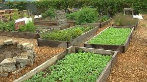san diego food bank turns food waste into compost for community